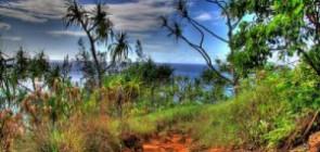Рай на земле — остров-сад Кауаи на Гавайях