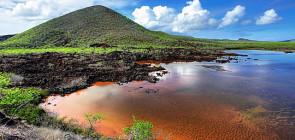Галапагосские острова одно из самых красивых мест на Земле