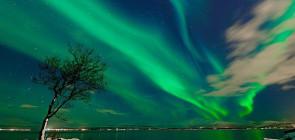 Северное сияние (фото и видео)