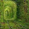 Тоннель любви на Украине в городе Клевань