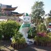 Город кошек и музей кошек