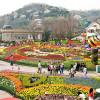 Парк Эверленд в Корее