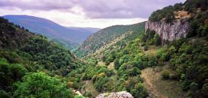 Путешествие по каньону Узунджа
