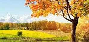 Где отдохнуть в ноябре?