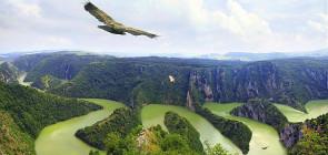 Сербия отдых и лечение