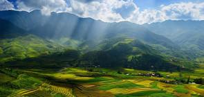 Тайланд или Вьетнам. Где лучше?