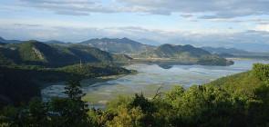 Скадарское озеро. Черногория