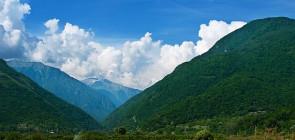 Отдых в солнечной Абхазии