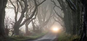 Темная аллея в Северной Ирландии