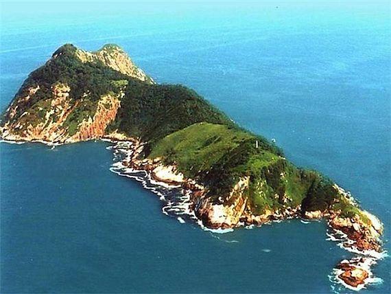 Ужасный страшный остров змей в Бразилии