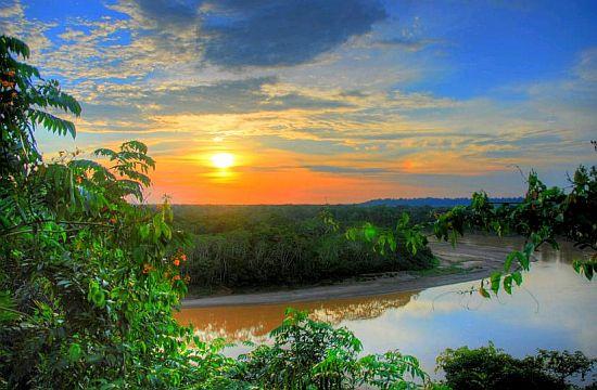 Дождевые леса Амазонии, или амазонские джунгли