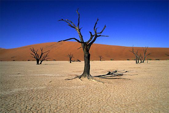 Мертвая Долина. Пустыня Намиб