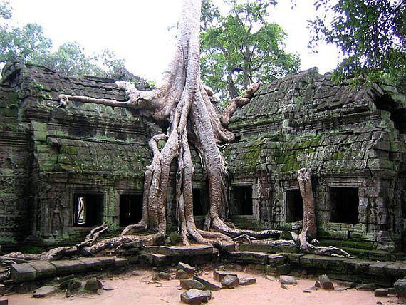 ангкор ват фото