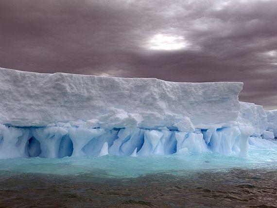 антарктика фото