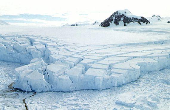 антарктика смотреть онлайн