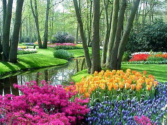 парк цветов кекенхоф