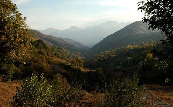золотая долина