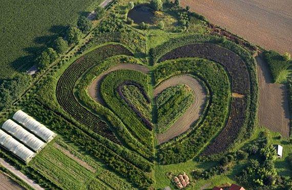 Сад в форме сердца в Вальтропе, Германия