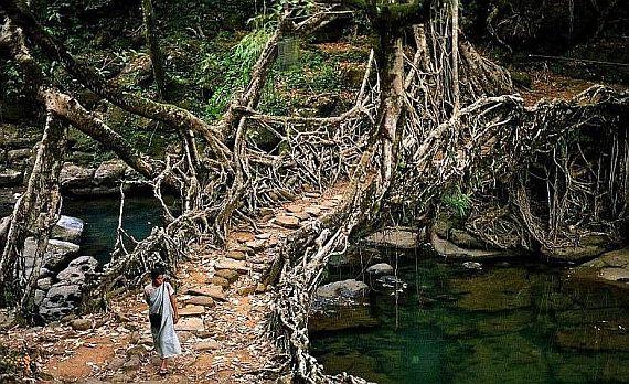 мосты в индии