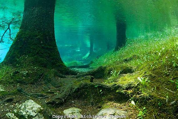 Австрия зеленое озеро