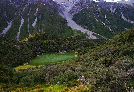 Зеленое озеро весной