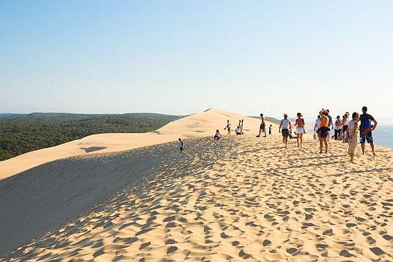 на вершине дюны пила