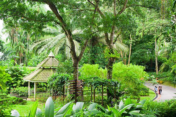 Сингапурский зоопарк (Singapore Zoo)