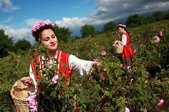 фестиваль болгарская роза