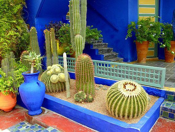 мажорель - сад в Марокко