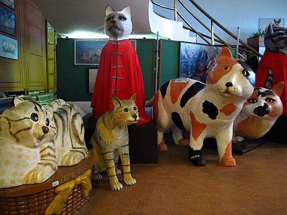 музей кошек фото