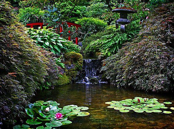 красивый сад Бутчартов