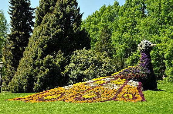остров цветов в германии