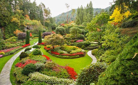 сады будхарт