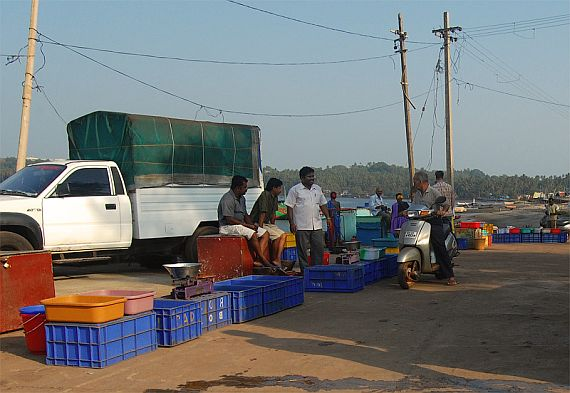 Рыбный рынок в Чапоре