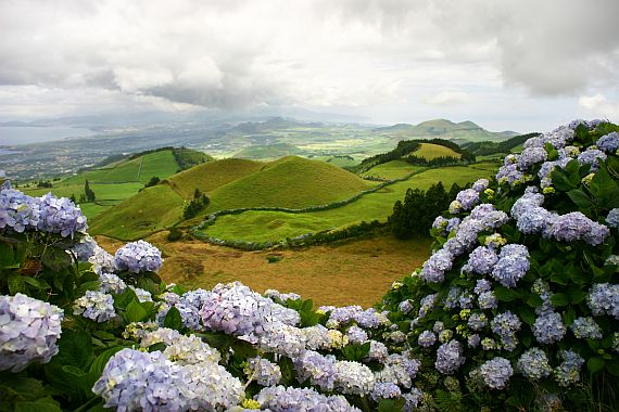 Азорские острова фото