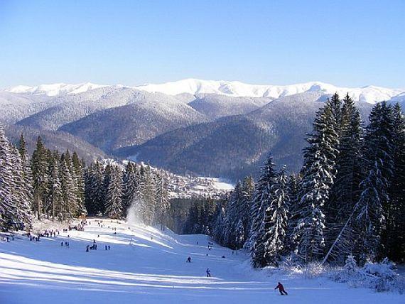 Буштень. Румыния