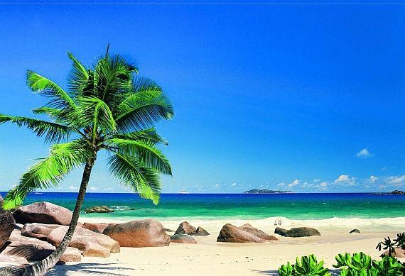 Отдых на Сейшельских островах фото