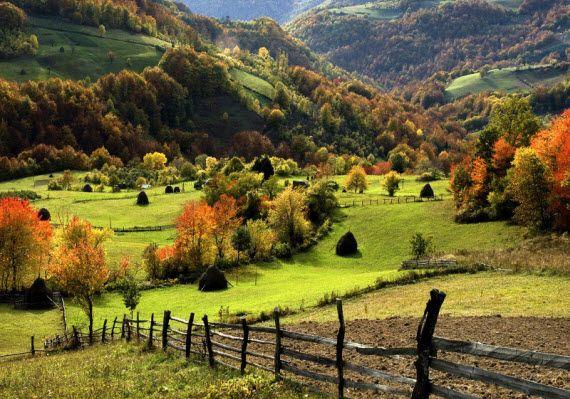 Златибор. Лечение в Сербии