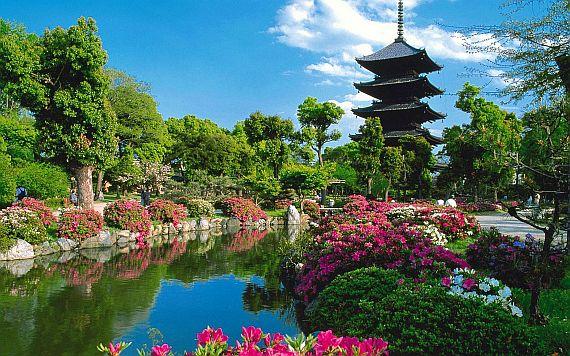 Природа в Японии