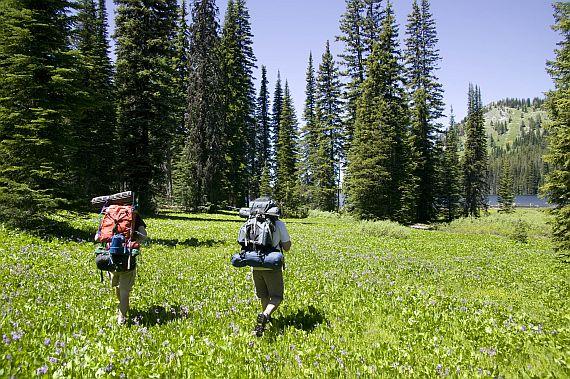 Экотуризм и экологические туры