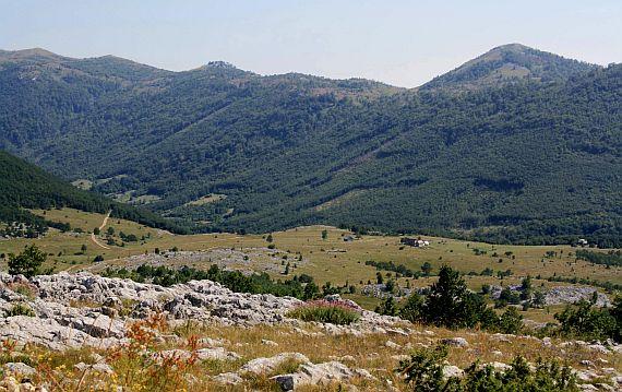 Каньон Тара. Черногория