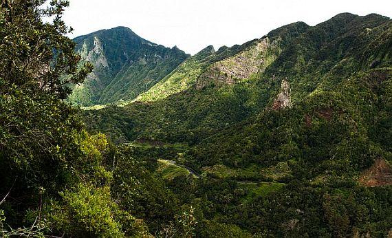 Национальный парк Гарахонай