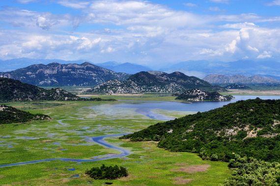Скадарское озеро в Черногории фото