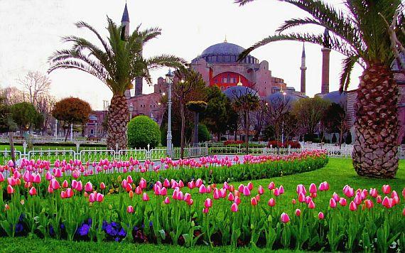 Тур поездка в Турцию