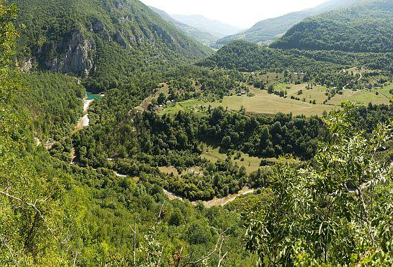 Окрестности реки Тара