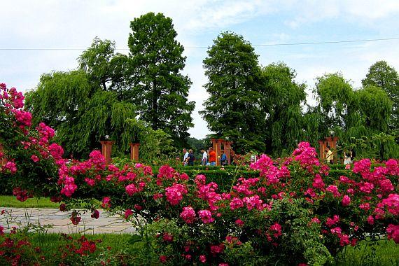 Парк Херастрау. Бухарест