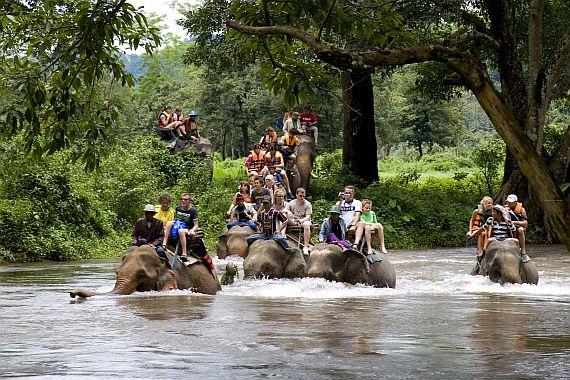 Страна слонов