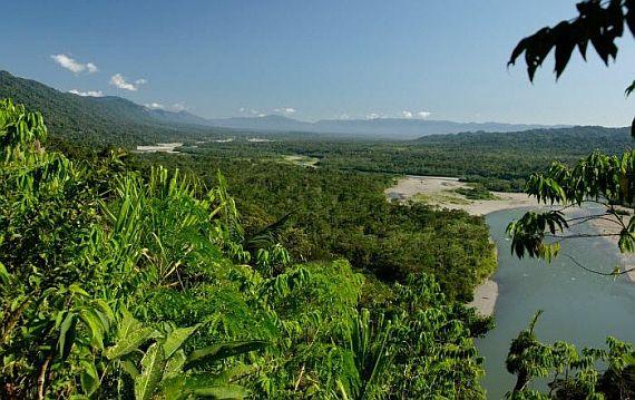 Ману национальный парк в Перу