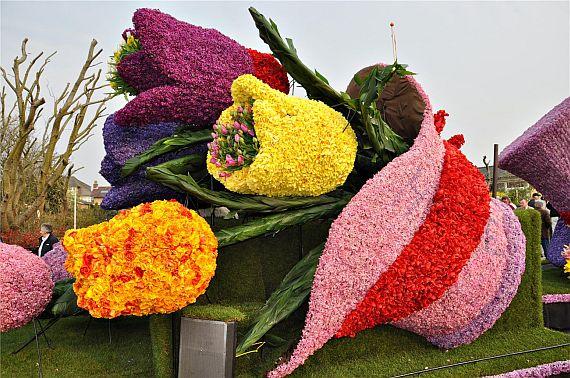 Парад тюльпанов в Амстердаме