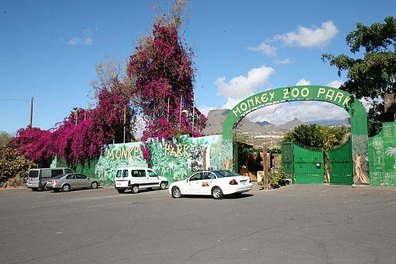 Зоопарк обезьян Тенерифе